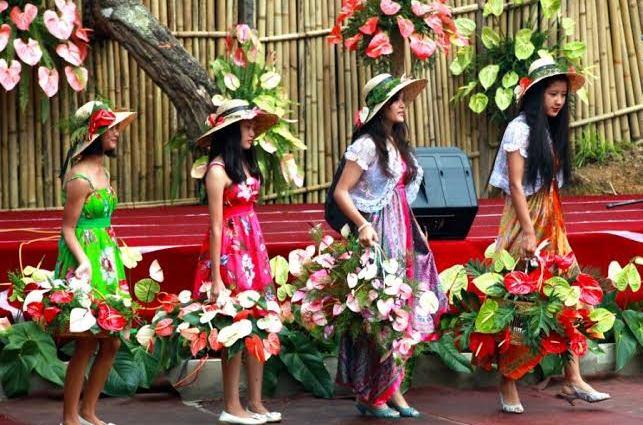 Anthurium Festival
