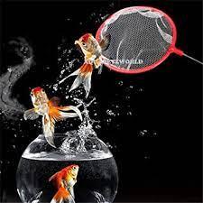 AQUAPETZWORLD Aquarium Fish Net – 1 Pc Quick Catch Mesh Wire Net Safe for All Fish – 5 Inch
