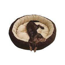 Best And Quality Bed For Dogs On Amazon