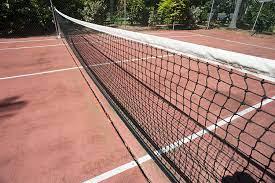 Wasco TNS00713 Plastic Material Tennis Court Net, Multicolor